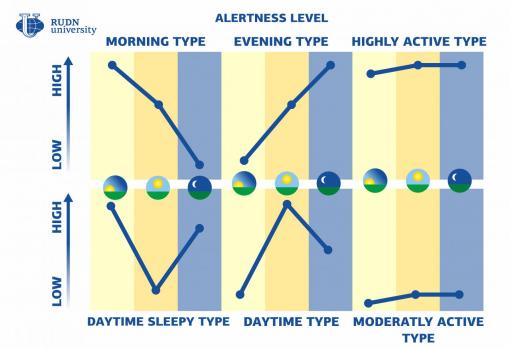 Les 6 chronotypes définis par la RUDN university