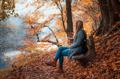 Couleurs de l'automne et jour gris
