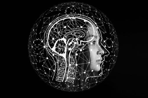 Symbolisation des mécanismes dans le cerveau